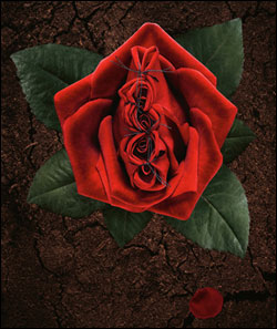 The Publicis ad depicts a sewn-up rose on barren ground.
